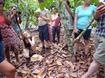 Farm - Rio Bosque Magico