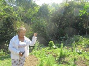 rural tourism | agritourism farms