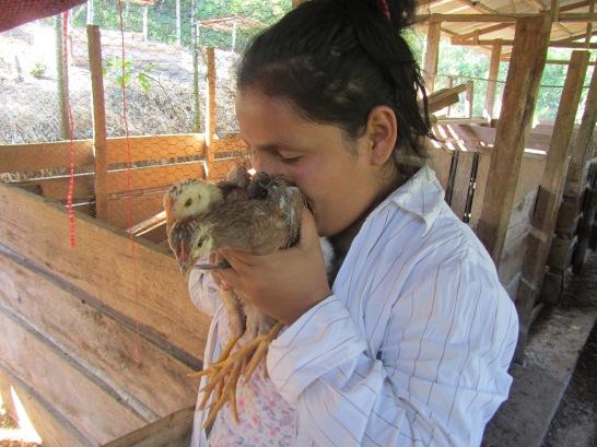 rural tourism   free-range farming Peru