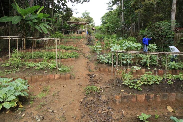 Black soil | agritourism | Lamas