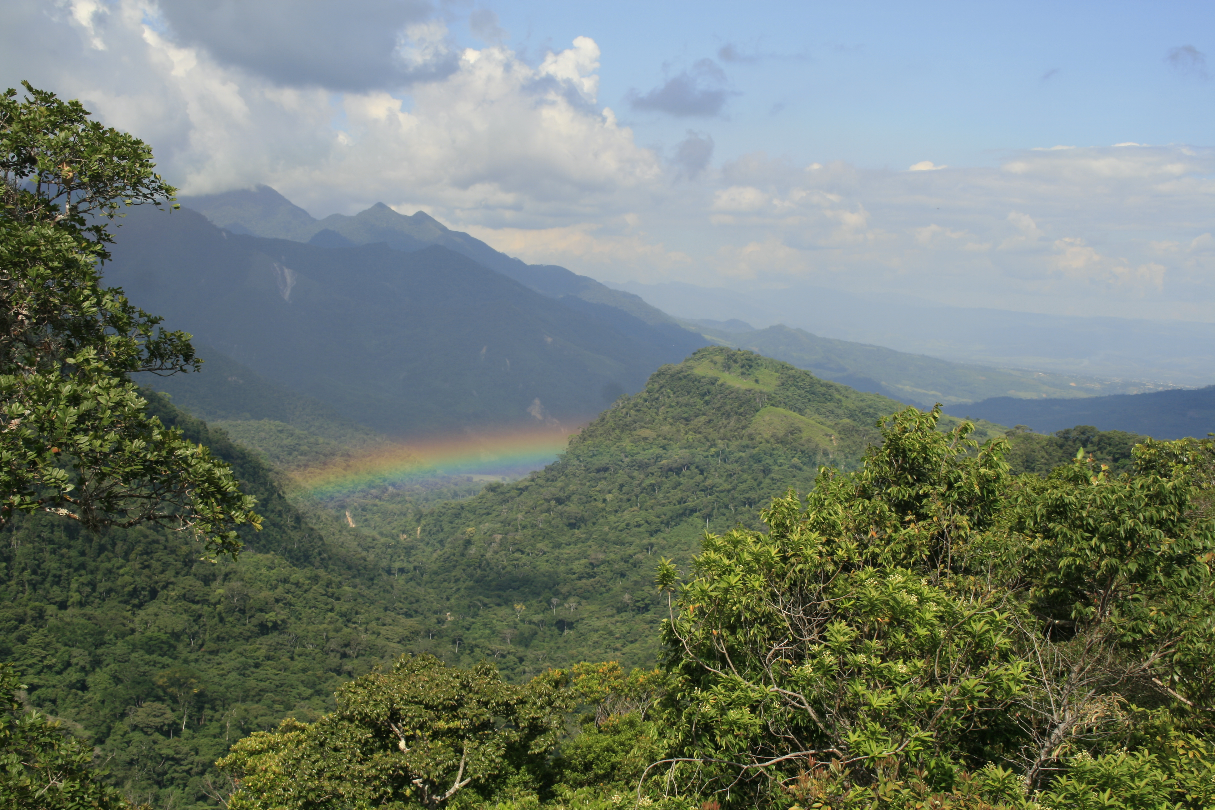 ecological viewpoint   protected Amazon rainforest   walking holidays