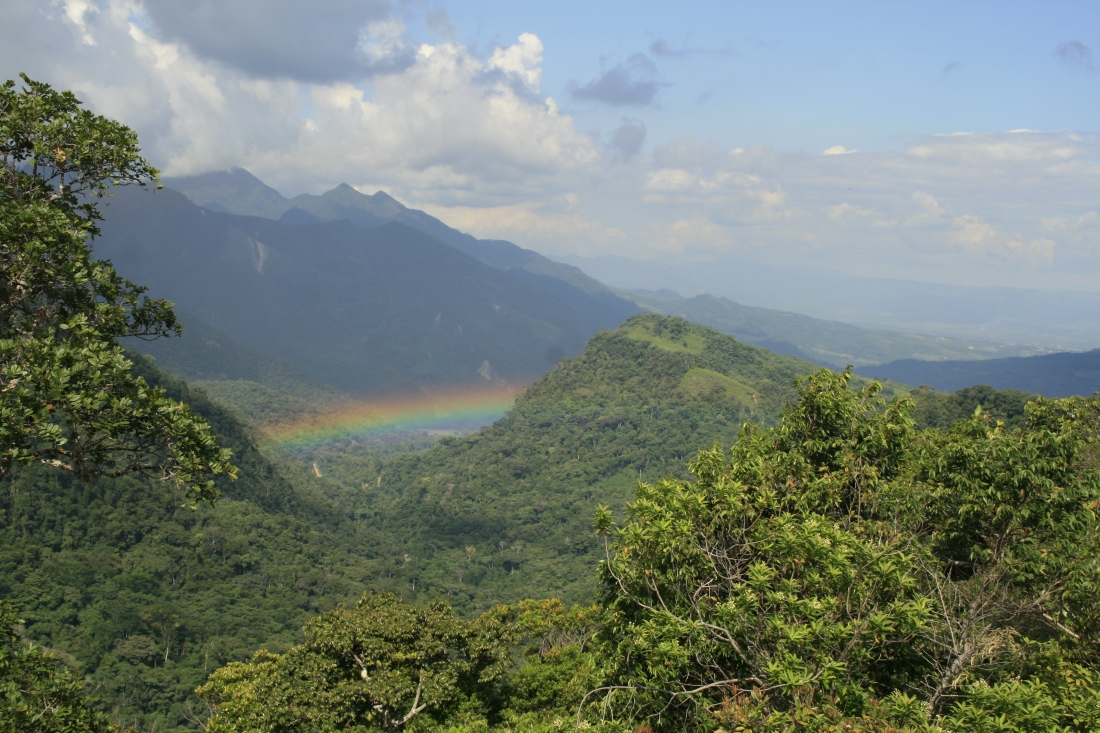 ecological viewpoint | protected Amazon rainforest | walking holidays