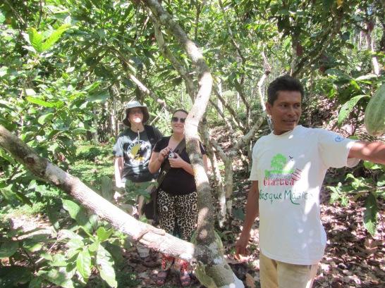 agritourism cacao farms - Peru