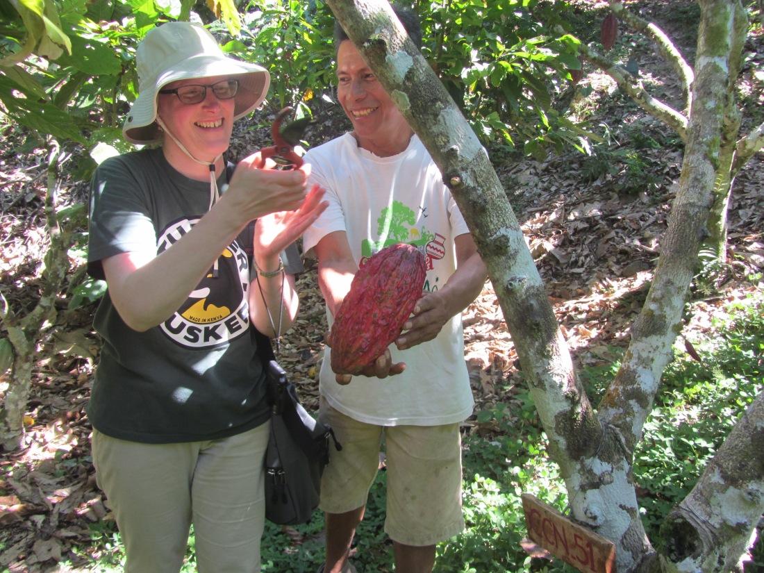 agritourism cacao farms | cacao in Peru | agritourism |