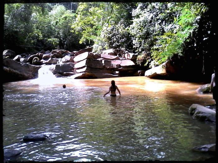 crystal river springs swimming | ecotourism | Chazuta