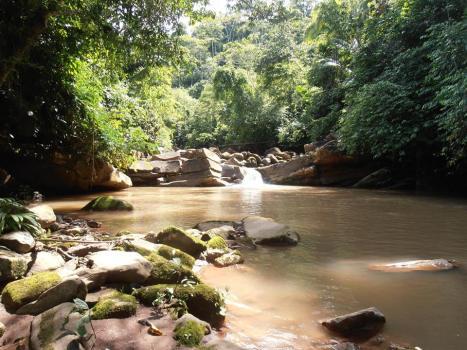 Peru walking trails | river trips