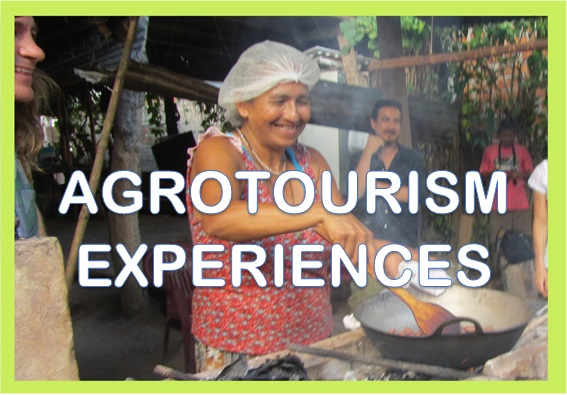 agrotourism experiences