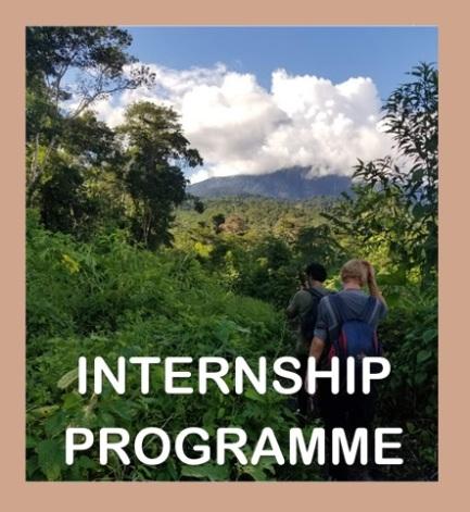 Intership program draft image